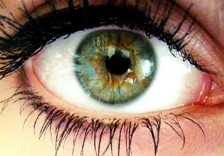 Eye on Web Trends